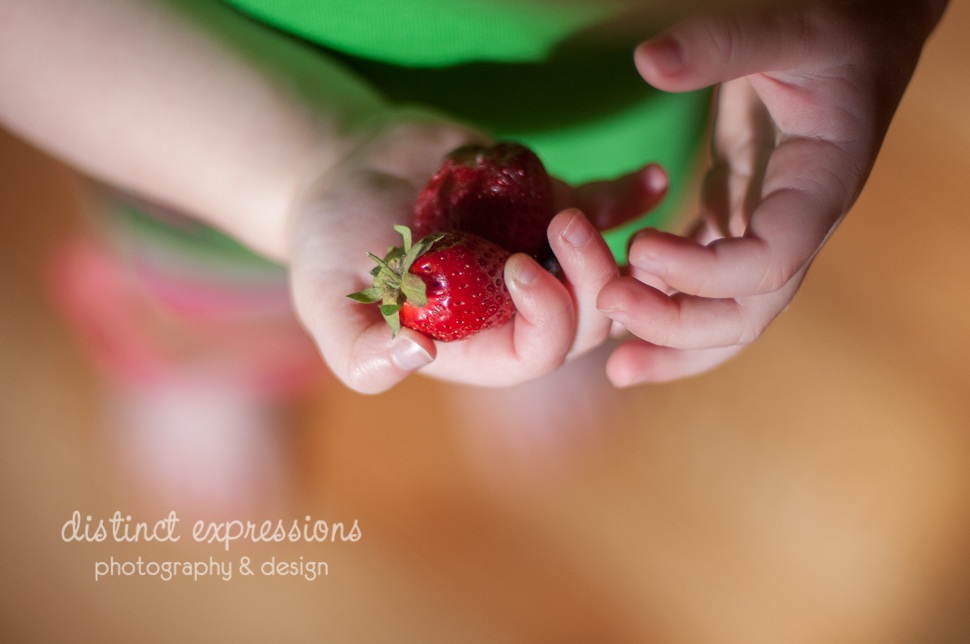 Grosse Pointe child and family photographer strawberry garden harvest
